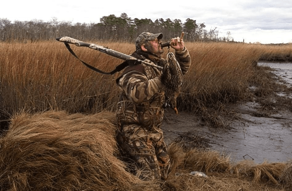 duck hunter in boat blind calling in ducks